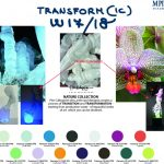 Cartella Colore Ideas W17_CS2